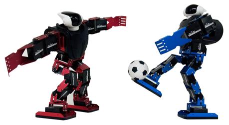 축구로봇01